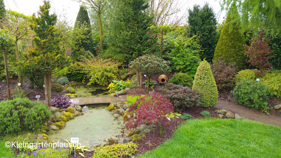 Ein Gestaltungsvorschlag für einen kleinen Garten ...