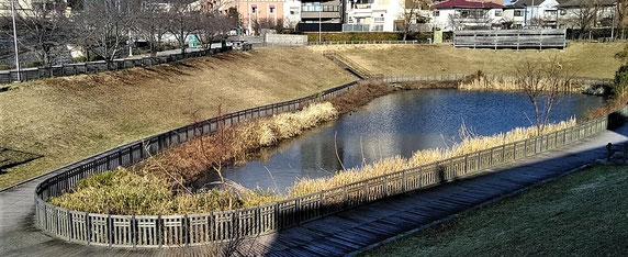 """""""顔""""となる池を中心にスッキリした「木戸が池緑地」"""