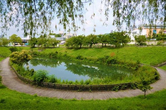 「木戸が池緑地」全景