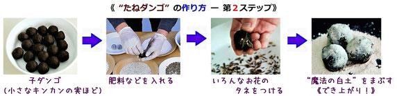 「子ダンゴ」づくりの手順(写真は、(株)サカタのタネ のHPから引用)