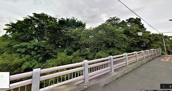 伐採前の様子①・・橋の上から(東南方向)。中央右寄りが桜の大木。