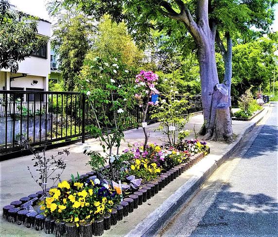 庭園風の石澄川花の散歩道(約60m)