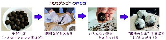 """""""たねダンゴ""""づくりのフロー(流れ)の写真((株)サカタのタネの資料から)"""