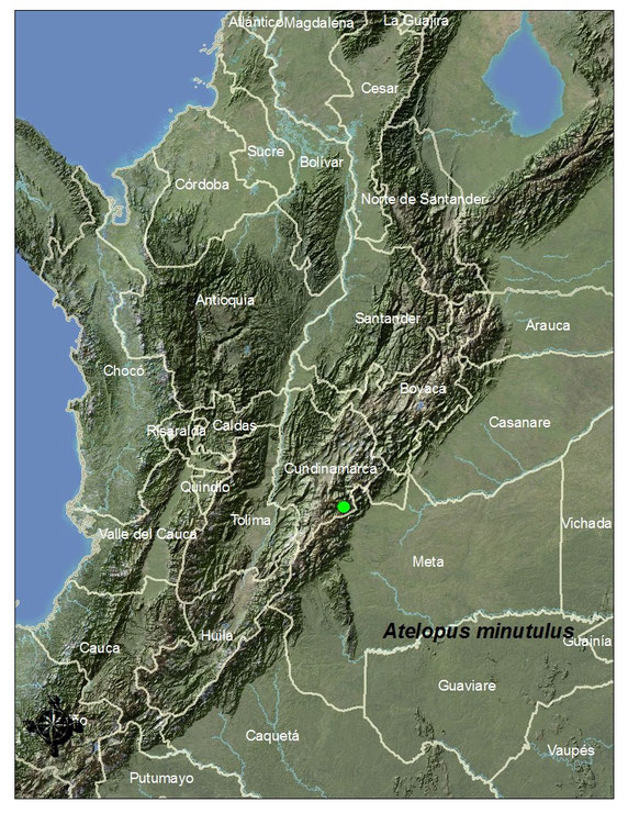 Distribución en Colombia