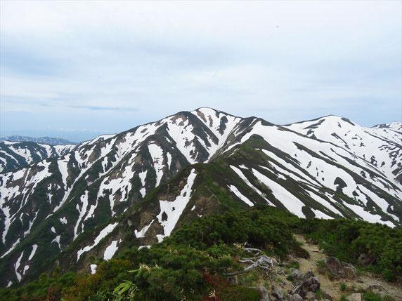 ▲小朝日岳山頂より大朝日岳を振り返る。