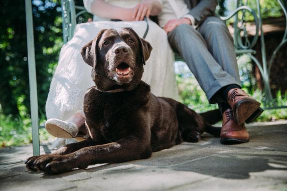 Hochzeit im Schweizer Haus in Plattenburg mit Fotografen