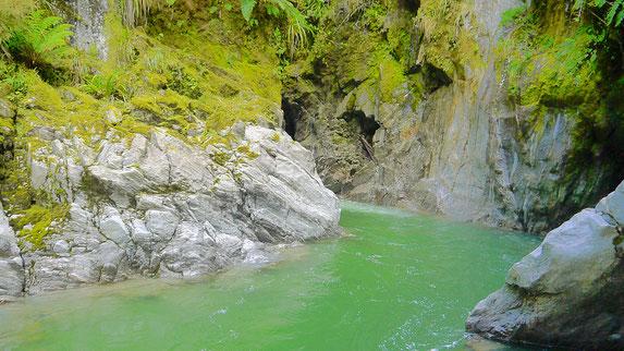 Tartare tunnel Hidden Lagoon
