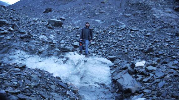 Fox Glacier Morain