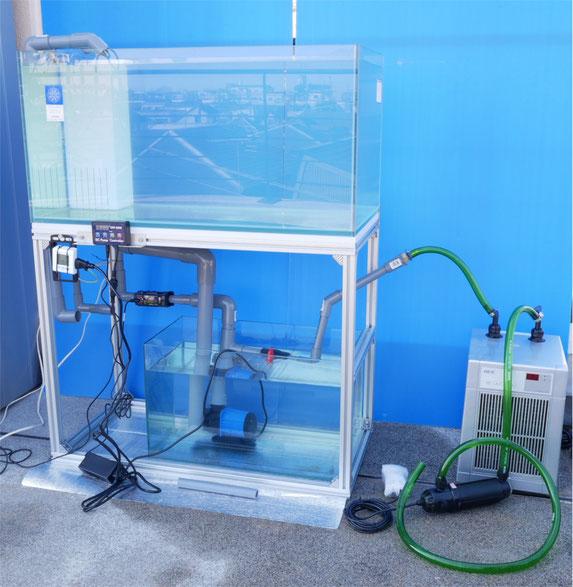 DEP-6000 HSABO 水中ポンプ 水陸両用ポンプ 水槽 オーバーフロー水槽