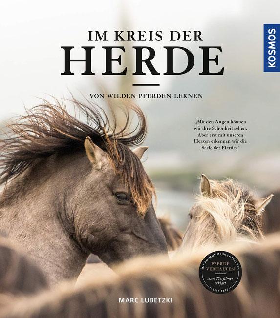 Im Kreis der Herde: Von wilden Pferden lernen.