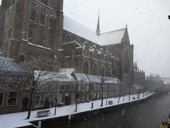 Sneeuwval Dordrecht, 10.12.2017