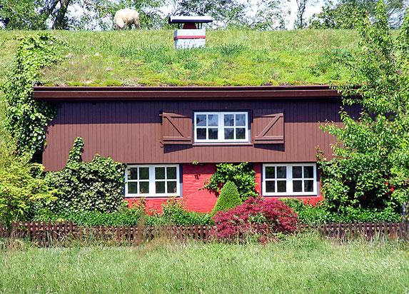 Komplett begrüntes Dach eines Landhauses.
