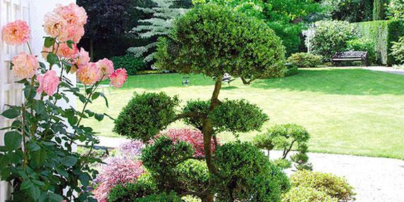 garten- und landschaftsbau - roosen garten- und landschaftsbau viersen, Gartenarbeit ideen