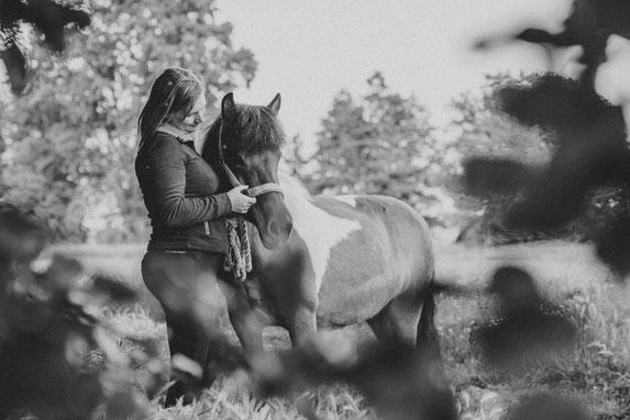 Pferdefotografie in Hannover mit Fotografen aus Wittenberge