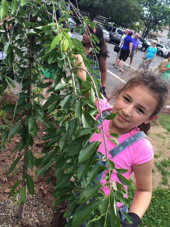 子どもたちは植林活動を楽しみ、来春に桜が見られることを心待ちにしています。