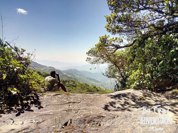 By Foot Adventures, Travel, Sri Lanka, Knuckles, Knuckles Mountain Range, Guided walks, Camp, Adventure, holiday, Wildlife, endemic wildlife, Cloud Forest, Pygmi Forest, Waterfalls, Tea plantage, Climbing, Hikinig, Tour, Tours, Kandy,