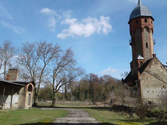 Unsere Feuerstelle im Gutshof Dahlewitz. Vor der alten Schmiede, gegenüber dem Alten Wasserturm  kochen wir am offenen Feuer.