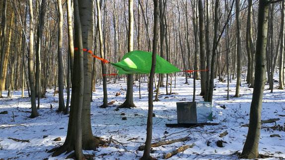 Baumzelt im Wald mit Schnee, Bild: Baumzelt Solling
