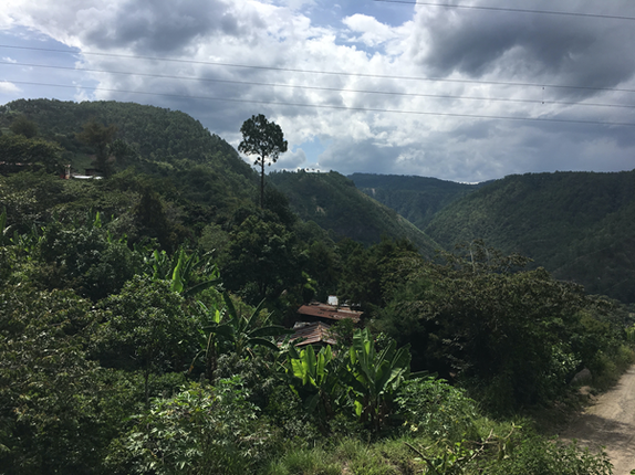 El Tesoro community, made up of Mayas Kaqchikels and K'iche' families. It is one of the most isolated communities in the Chimaltenango Department, at over 4 hours by bus to the closest hospital.  Source: personal archives, August 2019.
