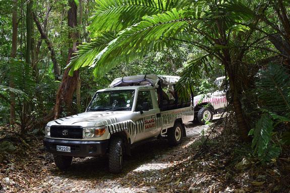Offroad Safari, Barbados, Karibik, Karibische Inseln