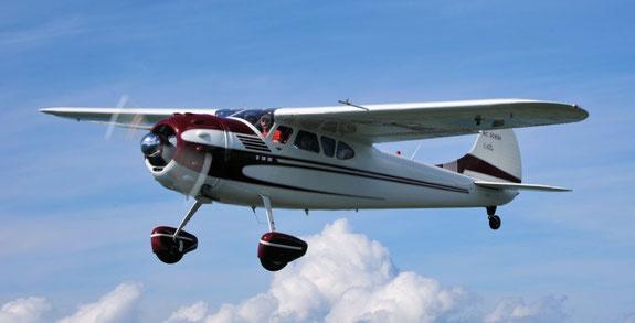 Cessna C195B - N3081B