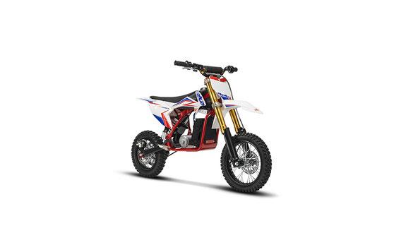 019 Beta Minicross-E