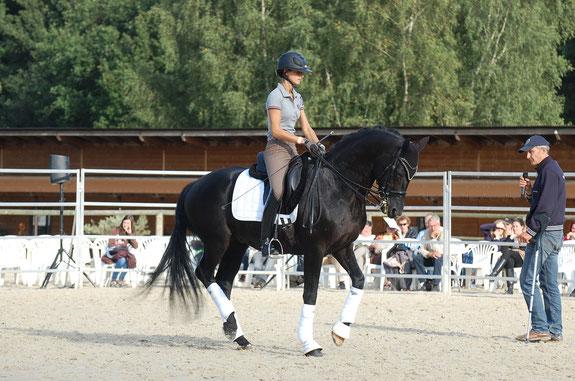 CUPIDO PB atelier progression du cheval de sport de dressage avec Jean-Marie CLAIR