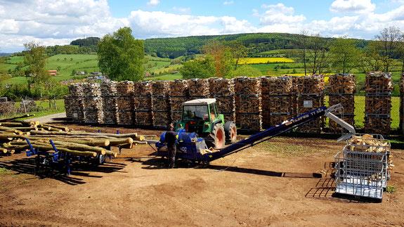 Tajfun rca 400 joy bei der Aufarbeitung von Brennholz