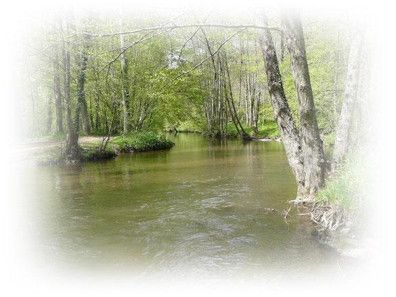 Vallée de l'Indre