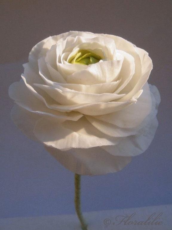 Ranunkel aus Blütenpaste | Floralilie Sugar Art