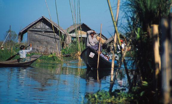 Fieldwork 2001