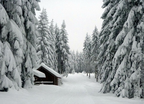 Skihütte Rauenstein