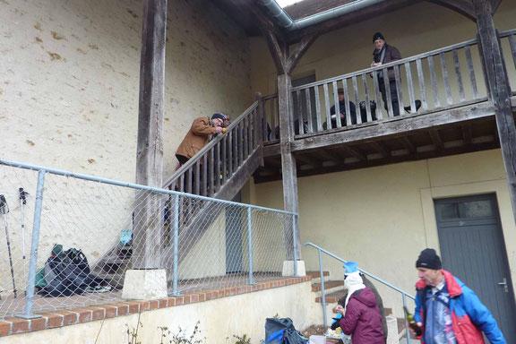 Pas génés les envahisseurs, ils s'installent partout, même à l'étage !