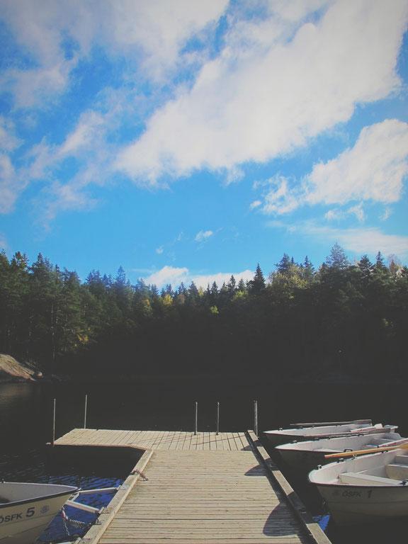 parc forêt lac suède bigousteppes