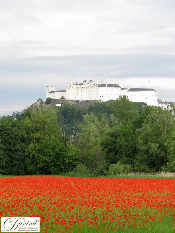 Salzburg Sehenswürdigkeit: Festung Hohensalzburg & Mohnfeld