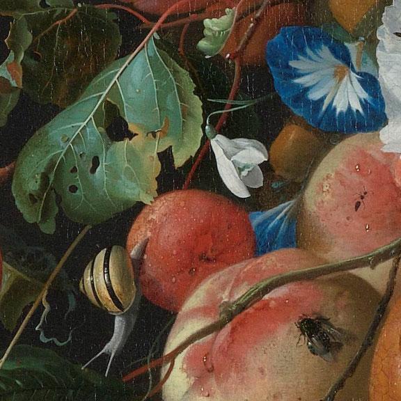 Il Bucaneve nel dettaglio del dipinto di Jan Davidsz de Heem.