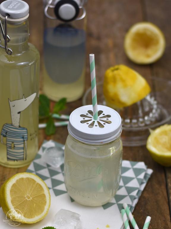Ingwer-Zitronen Brause