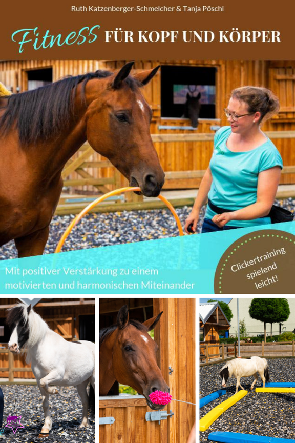 Clickertraining mit Pferden: Lern- und Konzentrationsspiele für Pferde