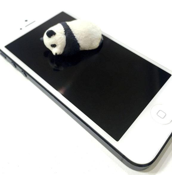 iPhone5 白黒パンダ