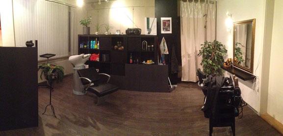 Salon 1