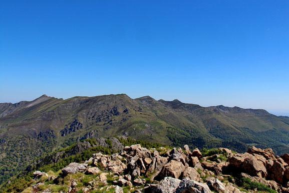 Pic de Bazès (1804m). Vue sur la crête qui va du Pic de l'Estibette (à gauche) au Soum de las Escures.