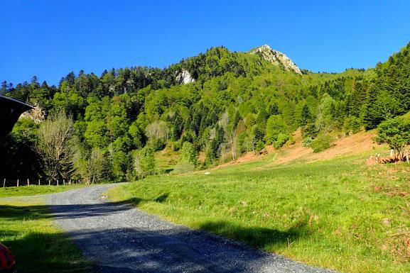 J'emprunte la large piste qui va me conduire au Col de Couraduque. Devant moi, le Pic de Bazès (1804m).
