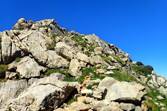 Encore quelques mètres à grimper et je suis au sommet.