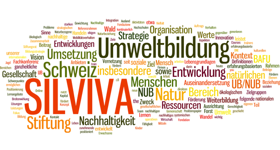 Sinn und Bedarf Stiftung SILVIVA WordCloud