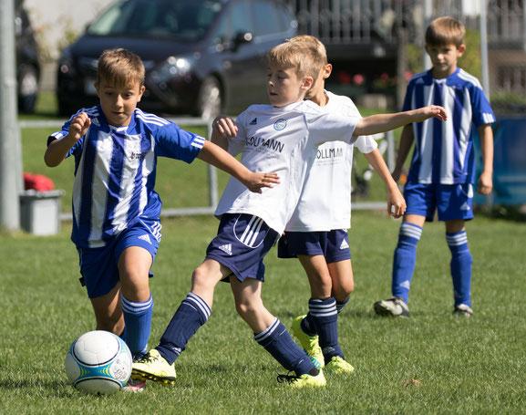 Die U10-Spieler sind mit viel Freude beim Spiel und zeigen sehr gute Fortschritte für eine erfolgreiche Zukunft. © Hepberger