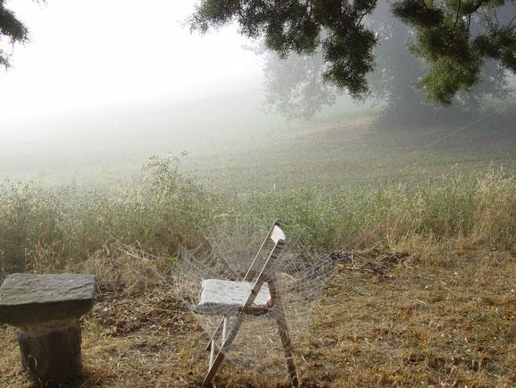 toscana im spinnennetz