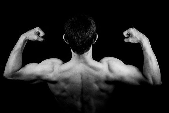 Muskelwachstum mit Personaltrainer Berlin