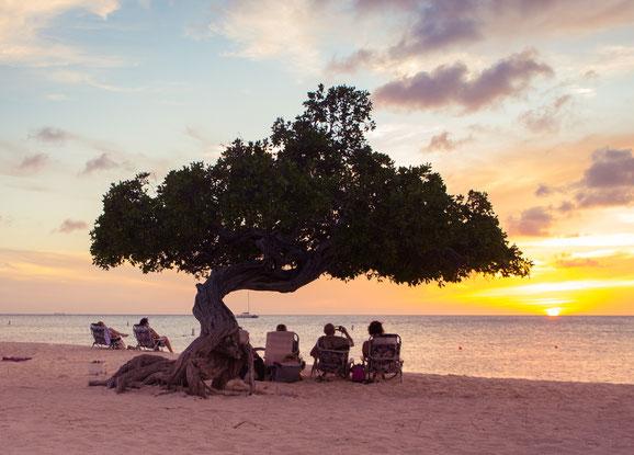 Insel, Aruba, Slow Down