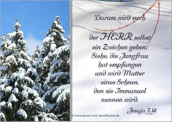 Erfüllte Prophetie - Jesu Geburt
