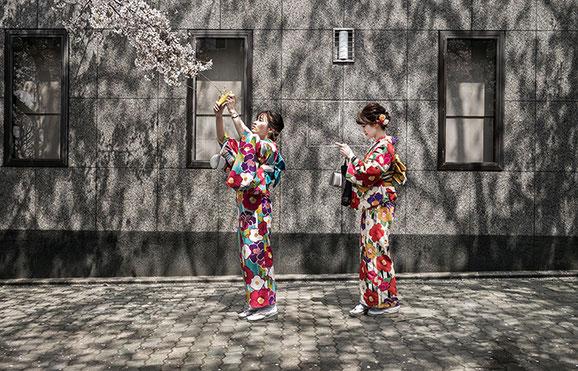 Zwei Japanerinnen in Kyoto mit Kirschblüten frühmorgens als Farb-Photographie, Japan